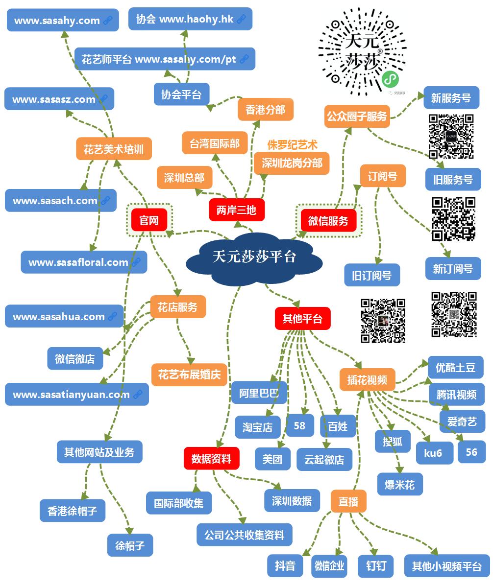 天元莎莎平台导图